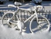 kolo_v_zime
