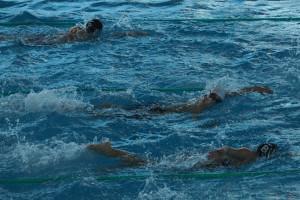 plavání v českobudějovickém bazénu