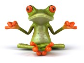 cute-frog-full-screen-high-resolution-wallpaper-download-pictures-free